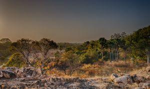 westafricart-068.jpg