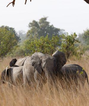 westafricart-086.jpg