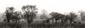 westafricart-087.jpg