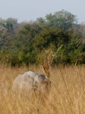 westafricart-088.jpg