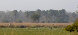 westafricart-121.jpg
