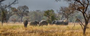 westafricart-145.jpg
