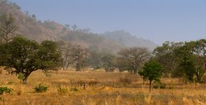 westafricart-193.jpg