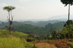 Rwanda-001.jpg