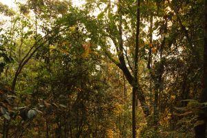 Rwanda-008.jpg