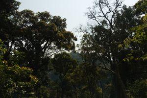 Rwanda-009.jpg