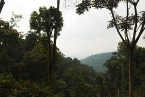 Rwanda-010.jpg