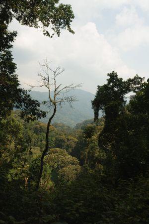 Rwanda-012.jpg