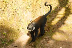 Rwanda-013.jpg
