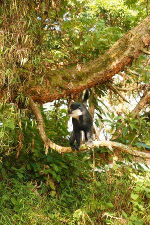 Rwanda-014.jpg