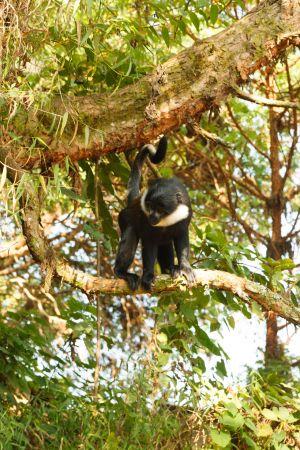 Rwanda-016.jpg