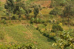 Rwanda-019.jpg