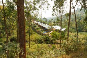 Rwanda-020.jpg
