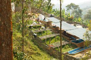Rwanda-021.jpg