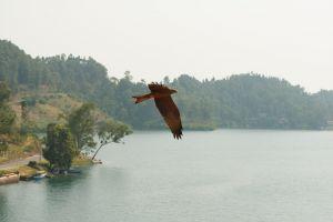 Rwanda-031.jpg