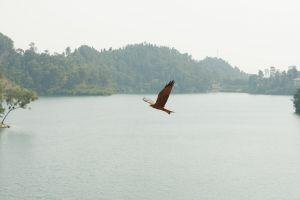 Rwanda-032.jpg