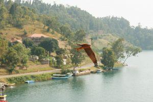 Rwanda-033.jpg